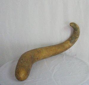 Cabaça, também conhecido como porongo