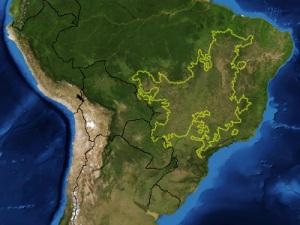 cerrado brasileiro tem metade da área desmatada
